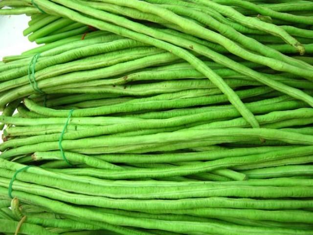 การกินผักดิบ ถั่วฝักยาว4