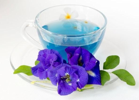 ชาจากดอกไม้ ชาดอกอัญชัน