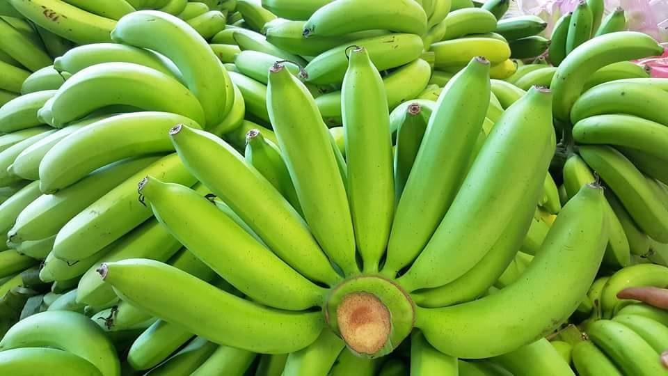 ประโยชน์ของกล้วยหอม-บำรุงกระดูกและฟัน