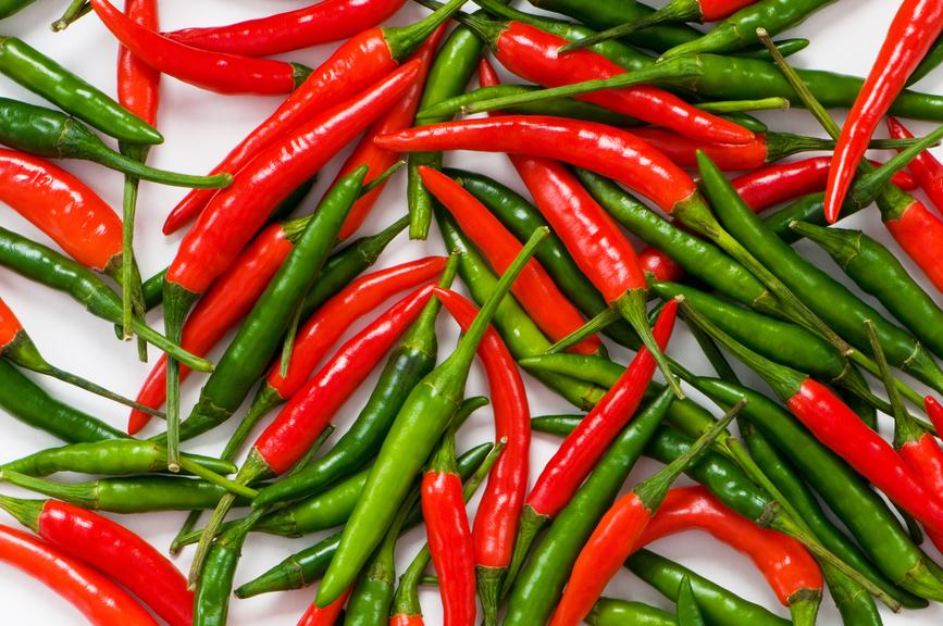 พริกขี้หนู เป็นพืชผักสวนครัวมีรสชาติเผ็ดร้อน