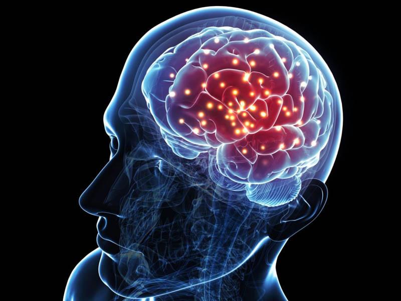 เคล็ดลับพัฒนาสมอง